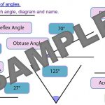 Drawing and Measuring Angles