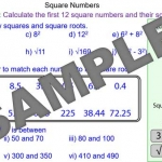 Square Numbers and Square Roots