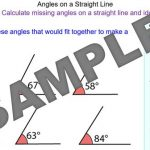 Introducing Angles on a Straight Line
