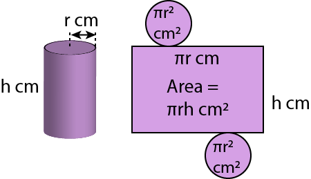 Surface Area of Cylinders