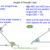 Revising Angles in Parallel Lines